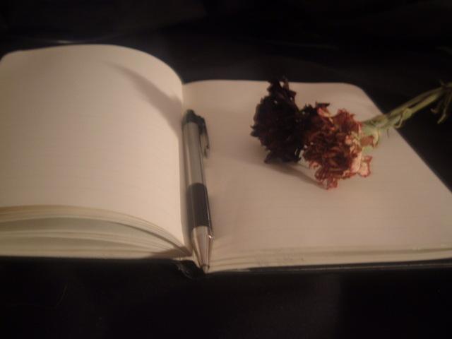 ������ ���� ����� Dear_Diary__by_final