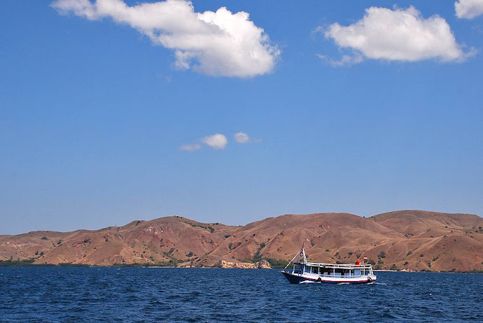 Barco navegando