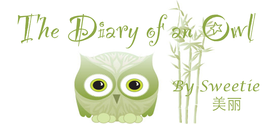 The Diary of an Owl