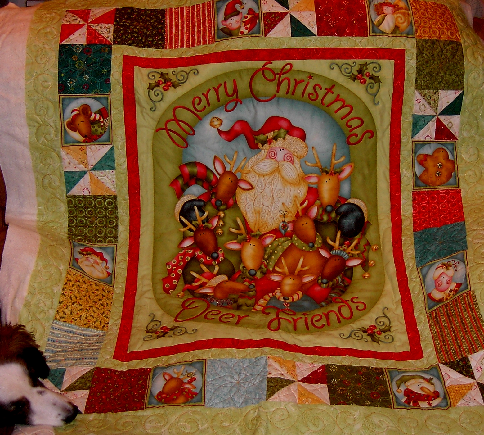 Another Mary Ann Custom Machine Quilting More Quilts