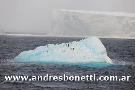 Pasaje de Drake - The Drake Passage - Antartida - Antartica -  Andrés Bonetti