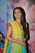 Nazia hussain latest glam pics-thumbnail-19