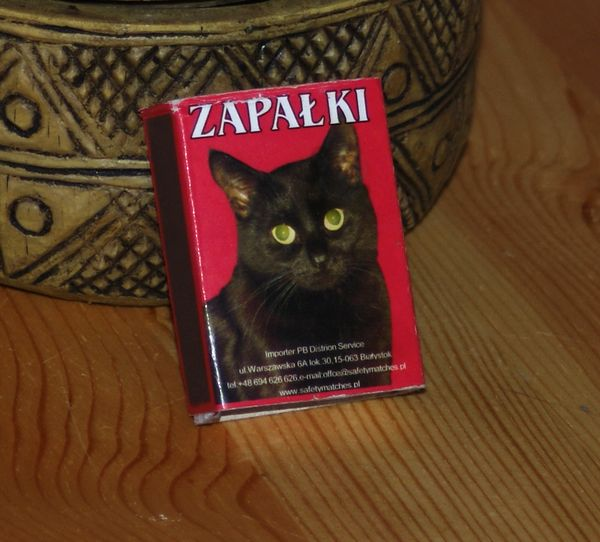 Zapalki Cat Can Strike Anywhere!