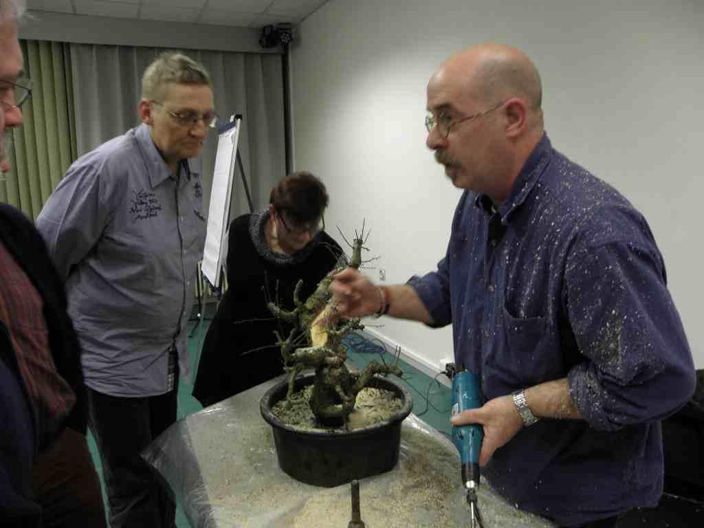 Wildwoodbonsai Bonsai Association Belgium 2012