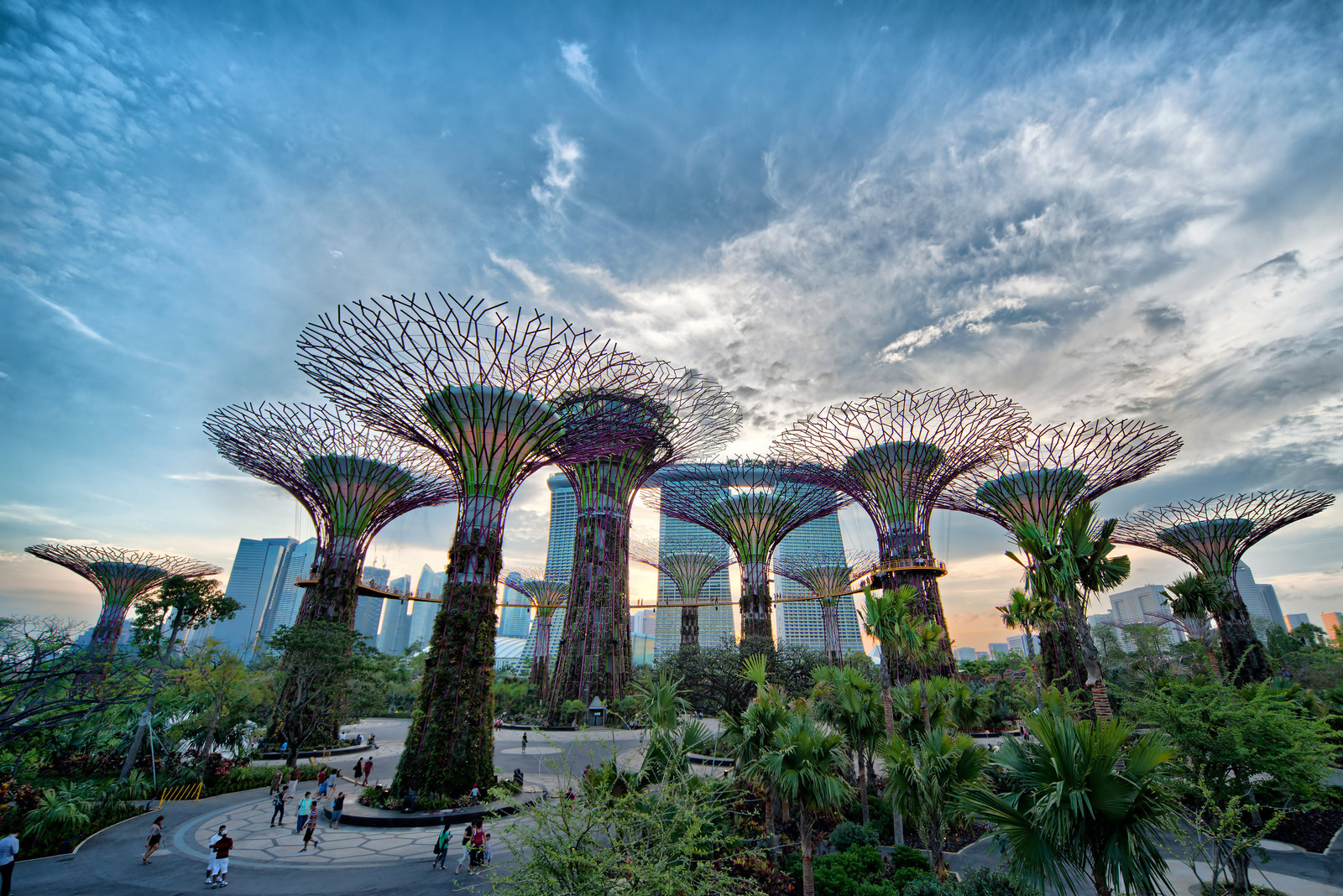 Garden By The Bay Attractions attractions of singapore!: gardenthe bay