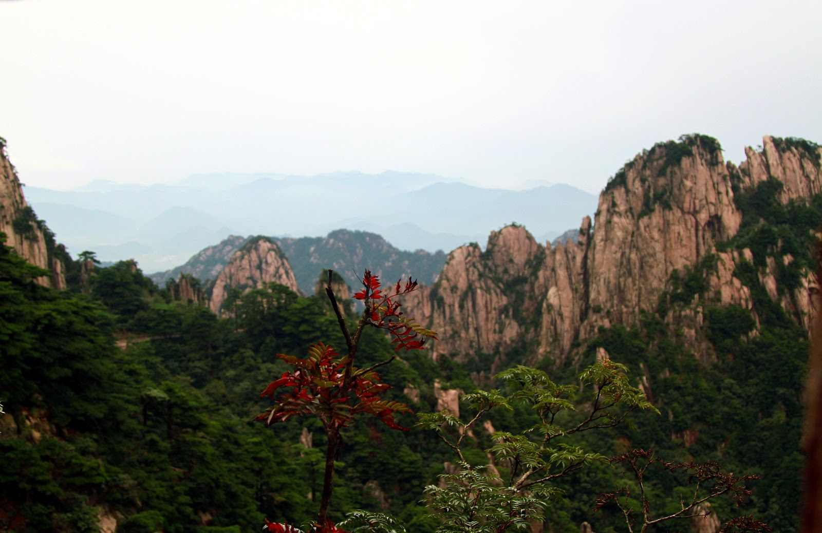 my favorite things: Travel : To the Peak of Huangshan Mountain