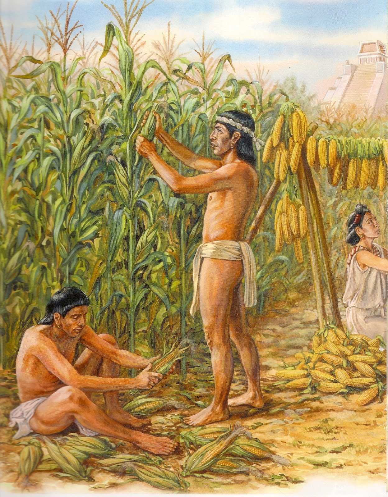 the hacienda plains nanosec zapotec and As far as the evidence that is available goes, before the zapotec and nanosec  split, the totolrec were the sole inhabitants of the hacienda plain, the lower.