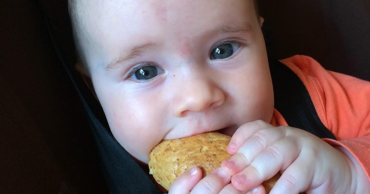 Baby Led Weaning Apple Cake Recipe