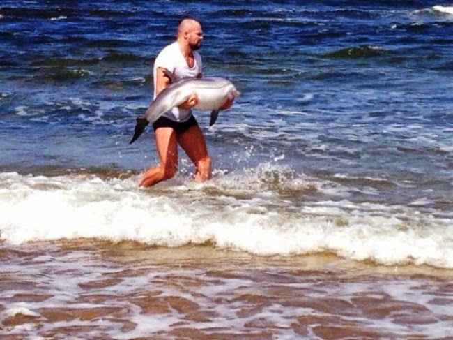#11. MMA fighter, Cathal Pendred, saw a baby dolphin stuck helplessly on shore. He picked her up and tossed her back into the ocean. - 24 Happy Animal Photos Made Possible By The People Who Saved Them.