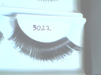Model 5022