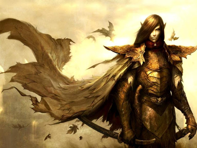 Elven Warrior High Quality Desktop Background Wallpaper