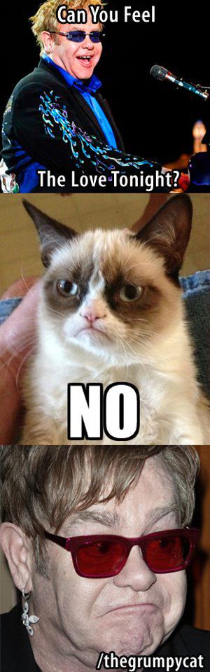 grumpy-cat-part1-2-09-092020192.png