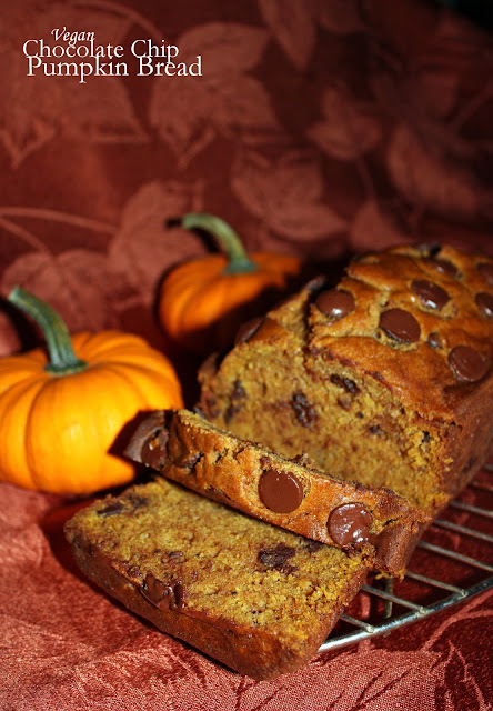 vegan chocolate chip pumpkin bread