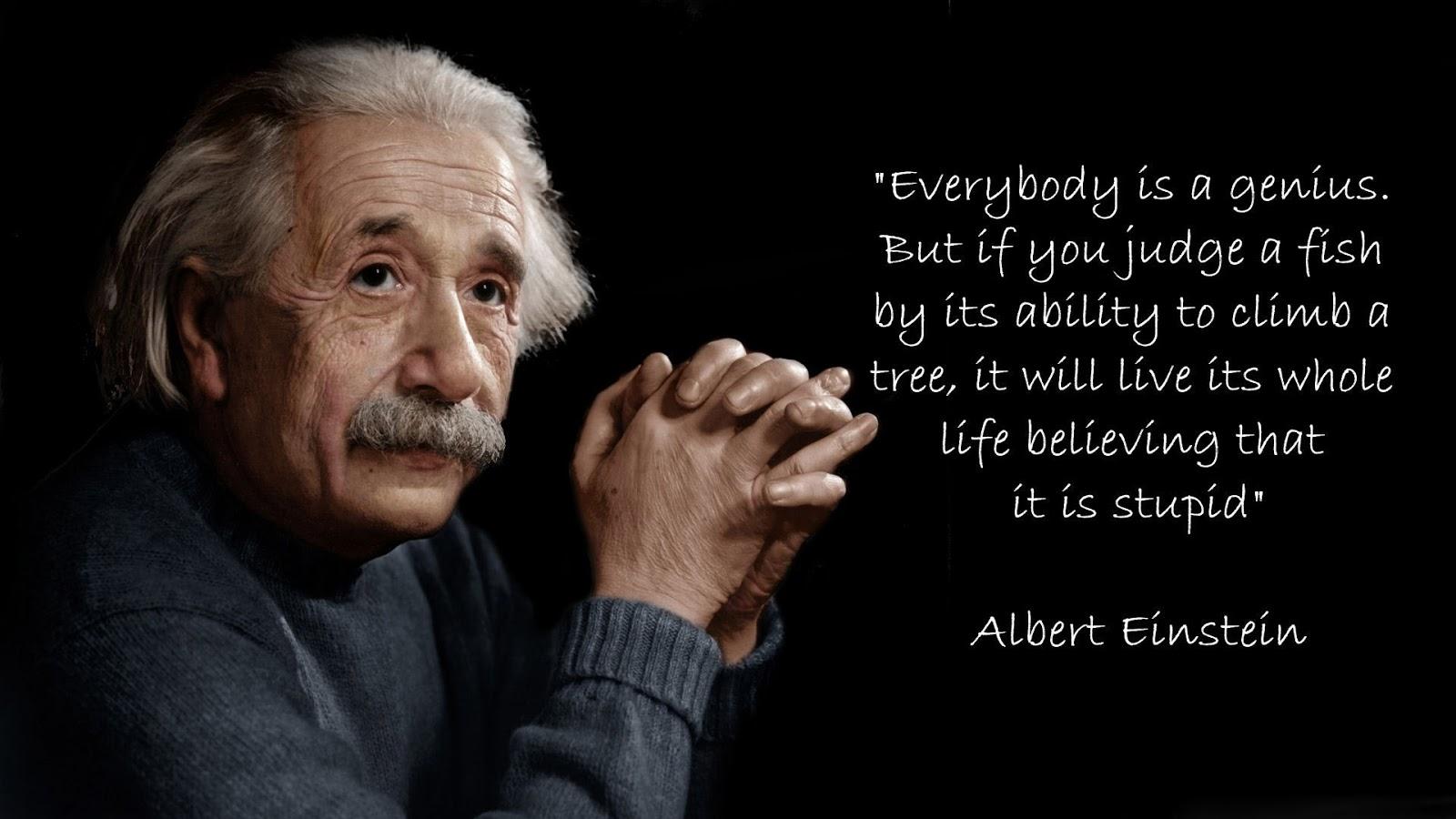 Albert Einstein Essay Parking Enforcement Officer Cover Letter      AlbertEinstein Albert Einstein Essay