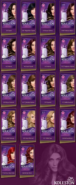 2015 Kadın ve Erkek Saç Modelleri: Saç Boyası Markaları ...