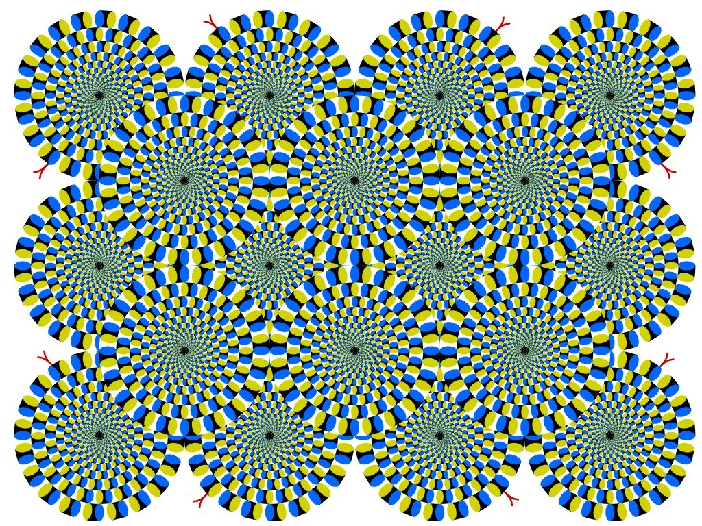 Best Optical Illusion I Have Ever Seen Pictures