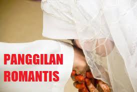 Panggilan Romantis Suami Isteri Ikut Sunah