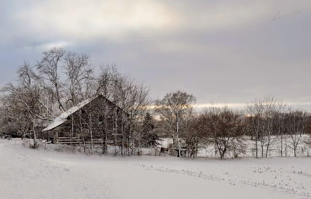 Cómo fotografiar nieve