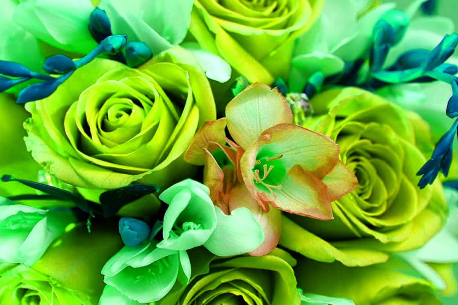 http://3.bp.blogspot.com/-Vqg6mX8mQAY/VJ37PROeQBI/AAAAAAAA0kw/l-0tlX7hUkw/s1600/flowers%2Blime%2Band%2Bteal%2Byellow.jpg