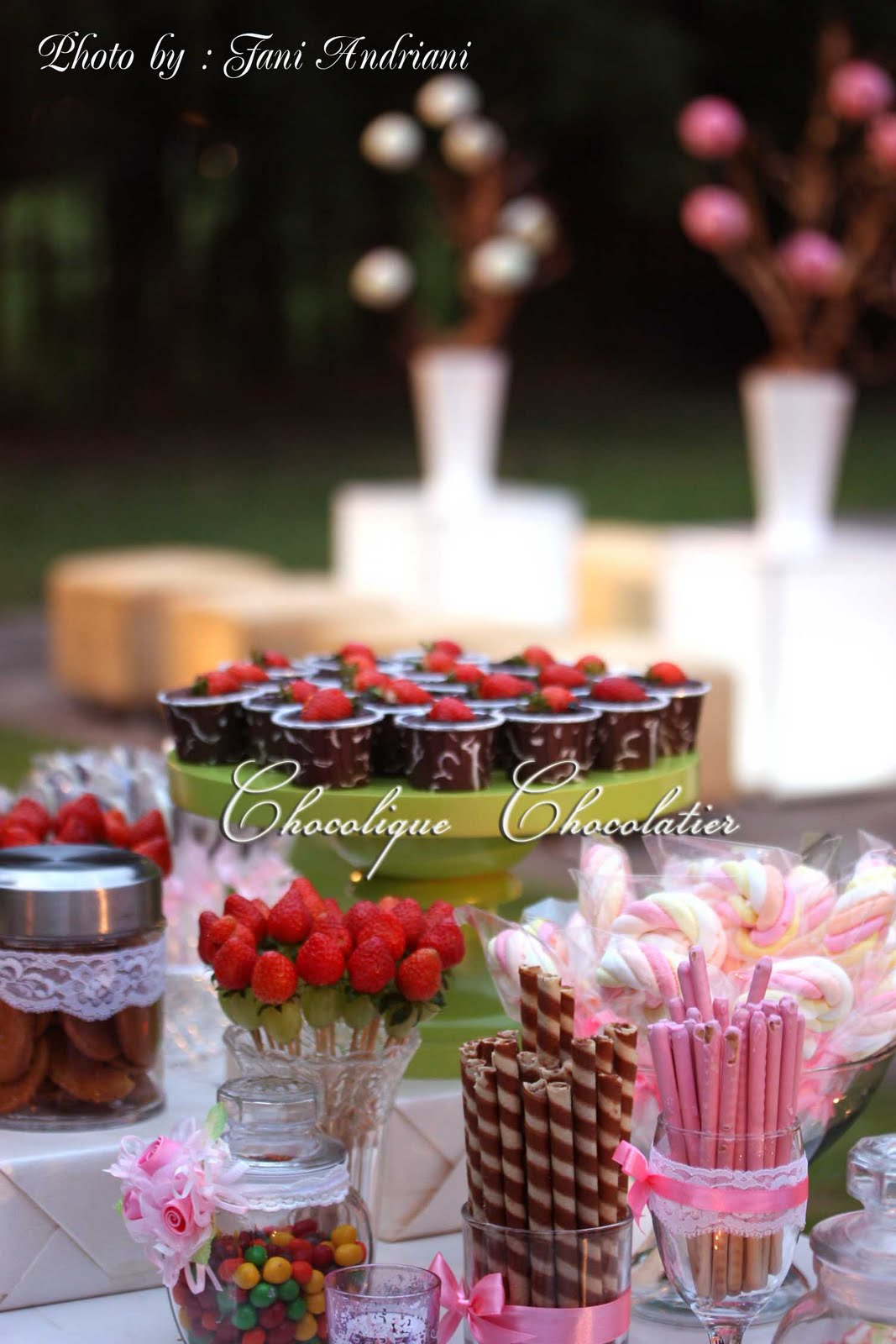 Chocolique Chocolatier Candy Bar For Hans Amp Uvicks Wedding Reception