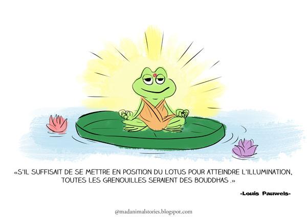 s'il suffisait de se mettre en position du lotus pour atteindre l'illumination,toutes les grenouilles seraient des bouddhas