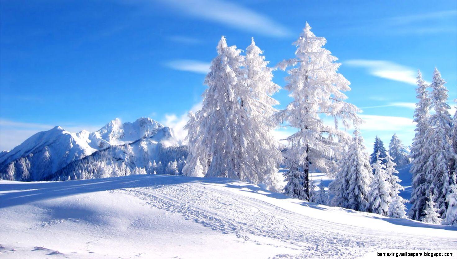 Winter Scene Wallpaper   WallpaperSafari
