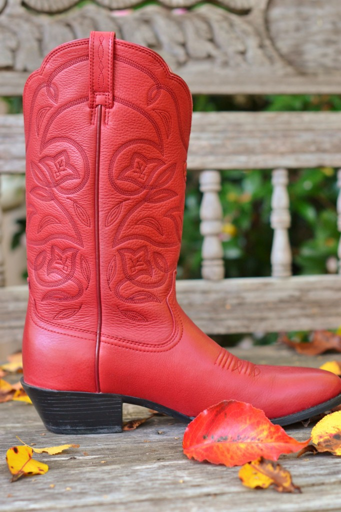 Boots Costume Pic: Cowboy Boots Red