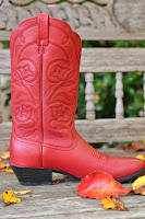 Cowboy Boots Red5