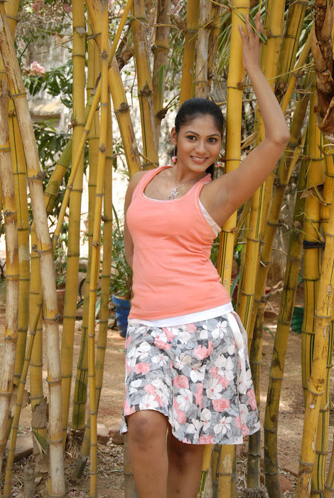 shruthi reddy actress pics
