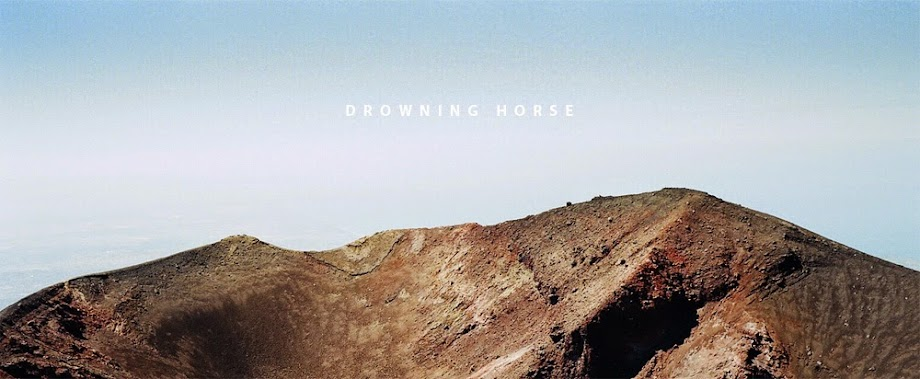 Drowning Horse