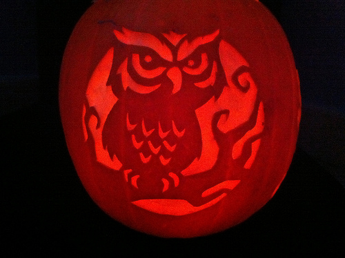 My owl barn collection carved pumpkins