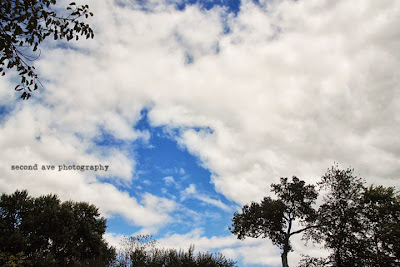 from below, village winery, waterford, Virginia photographer, wine, photoblog, photo challenge, skies, clouds, landscape,