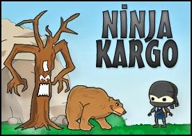 Ninja Kargo Oyunu
