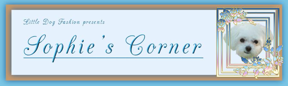 Sophie's Corner