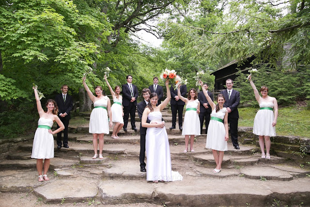 photo of a wedding party at Turkey Run State Park