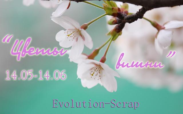 "+++Задание ""Цветы вишни"" до 14/06"