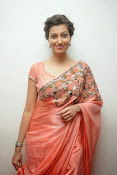 Hamsa Nandini photos at Legend audio-thumbnail-8