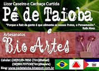 Bio Artes