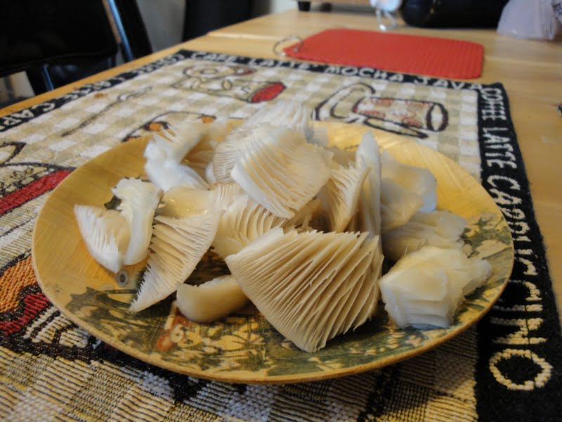 how to cook crown tipped coral mushroom