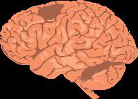 Améliorer la santé de votre cerveau