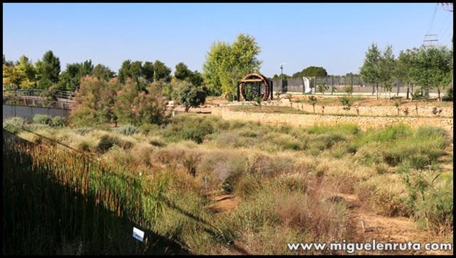 Jardín-Botánico-Castilla-La-Mancha_7