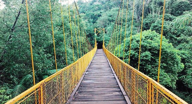 Jembatan Kuning Payangan : Sensasi Wisata Romantis
