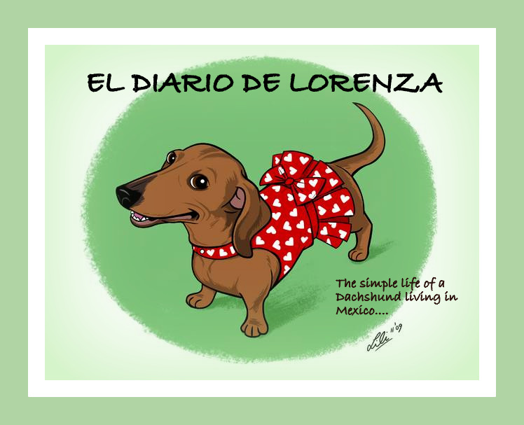 El Diario de Lorenza