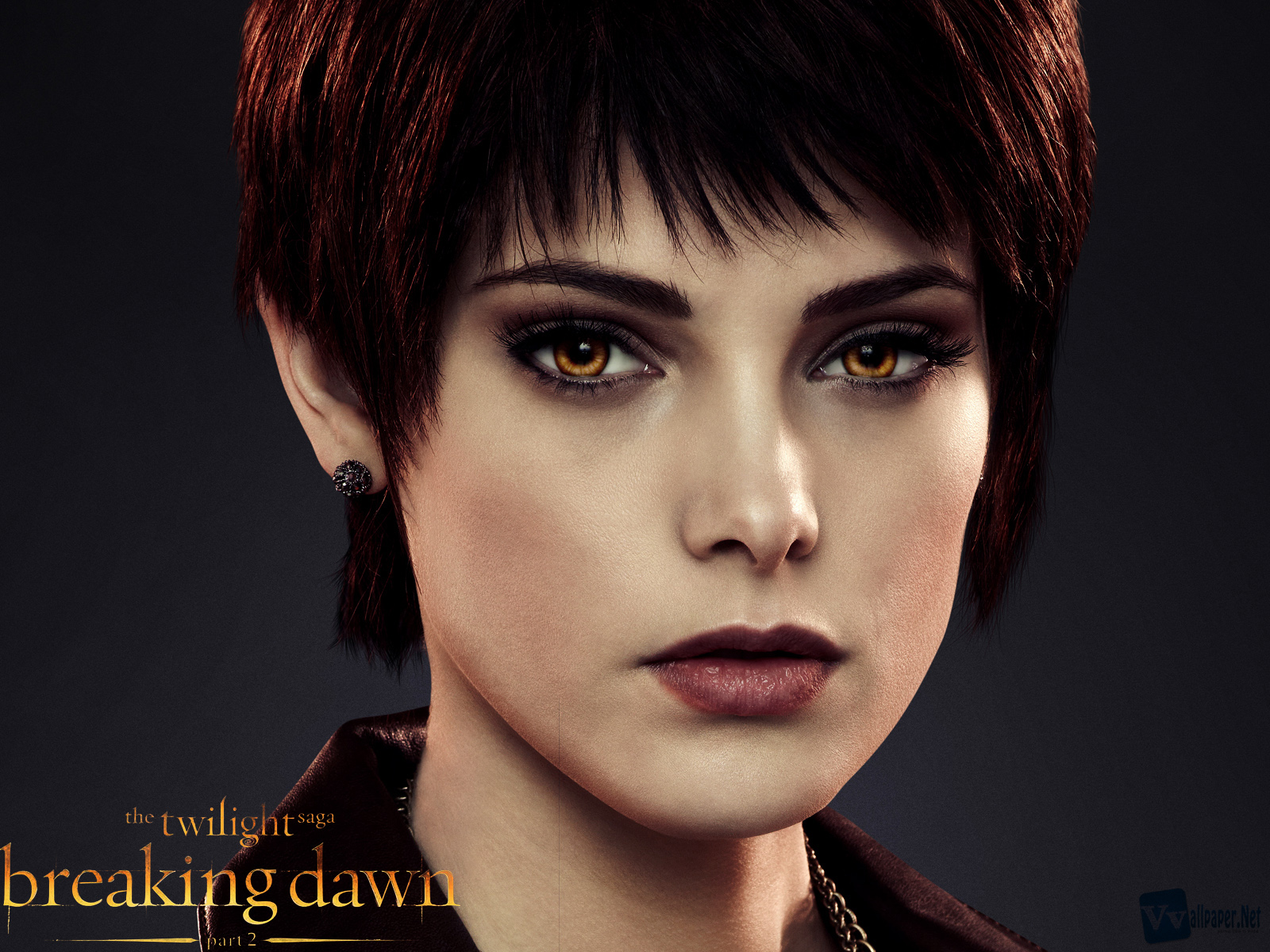 September 2012 hq wallpapers free wallpapers free hq - Twilight breaking dawn wallpaper ...