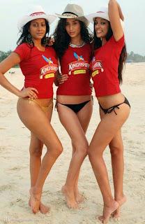 kingfisher calendar 2012