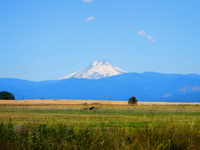 View of Mount Hood, OR