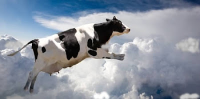 Cow that fell from the sky