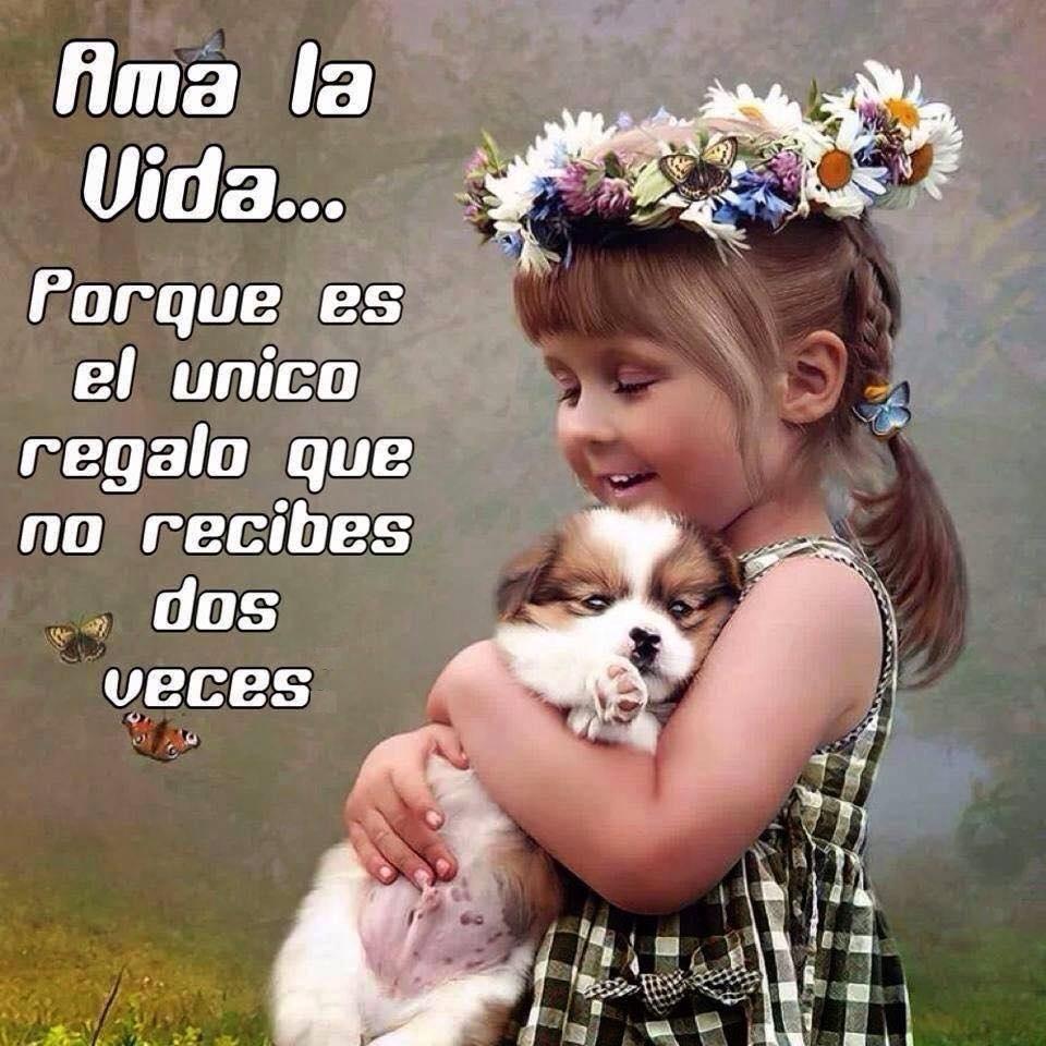 Ama_la_vida.jpg