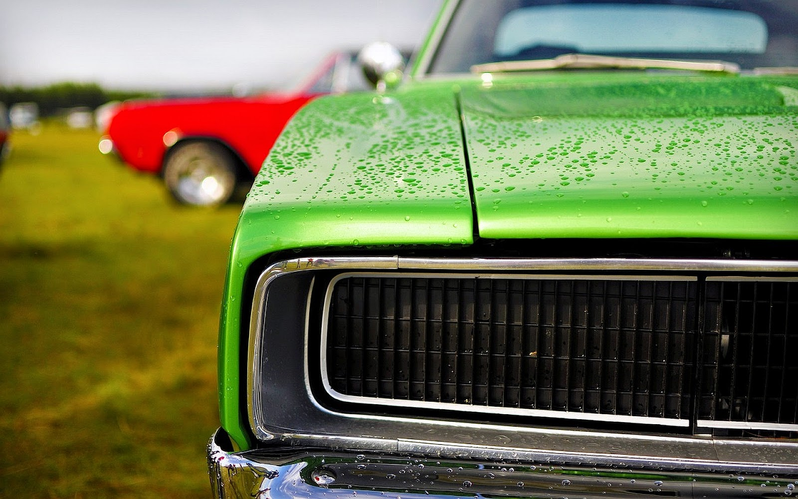 Dodge Wallpaper Full HD Quality Green