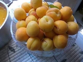 Recette du Jus d'abricot